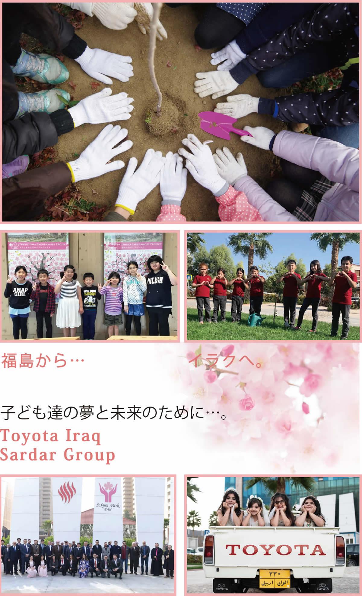 イラクの桜