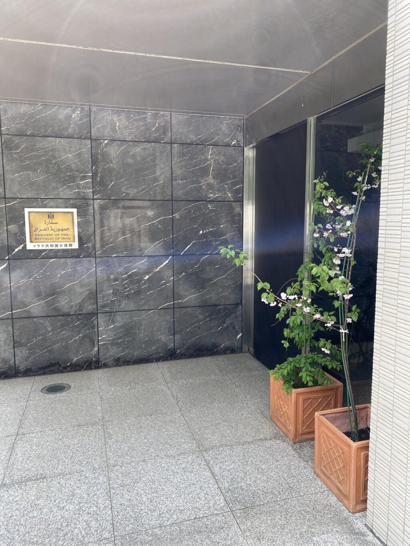 イラク大使館の桜