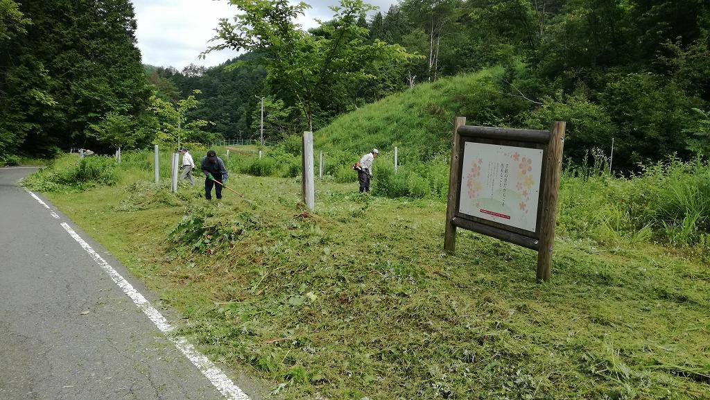 岐阜県八百津町「福地ふくしまさくらの森」4